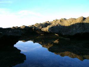 De l'eau au creux d'un rocher creusé par les vagues, au nord de Chypre