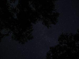 Le ciel étoilé dans le Grand Canyon